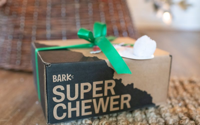 Bark Box Super Chewer Box: The Perfect Gift for your Pets