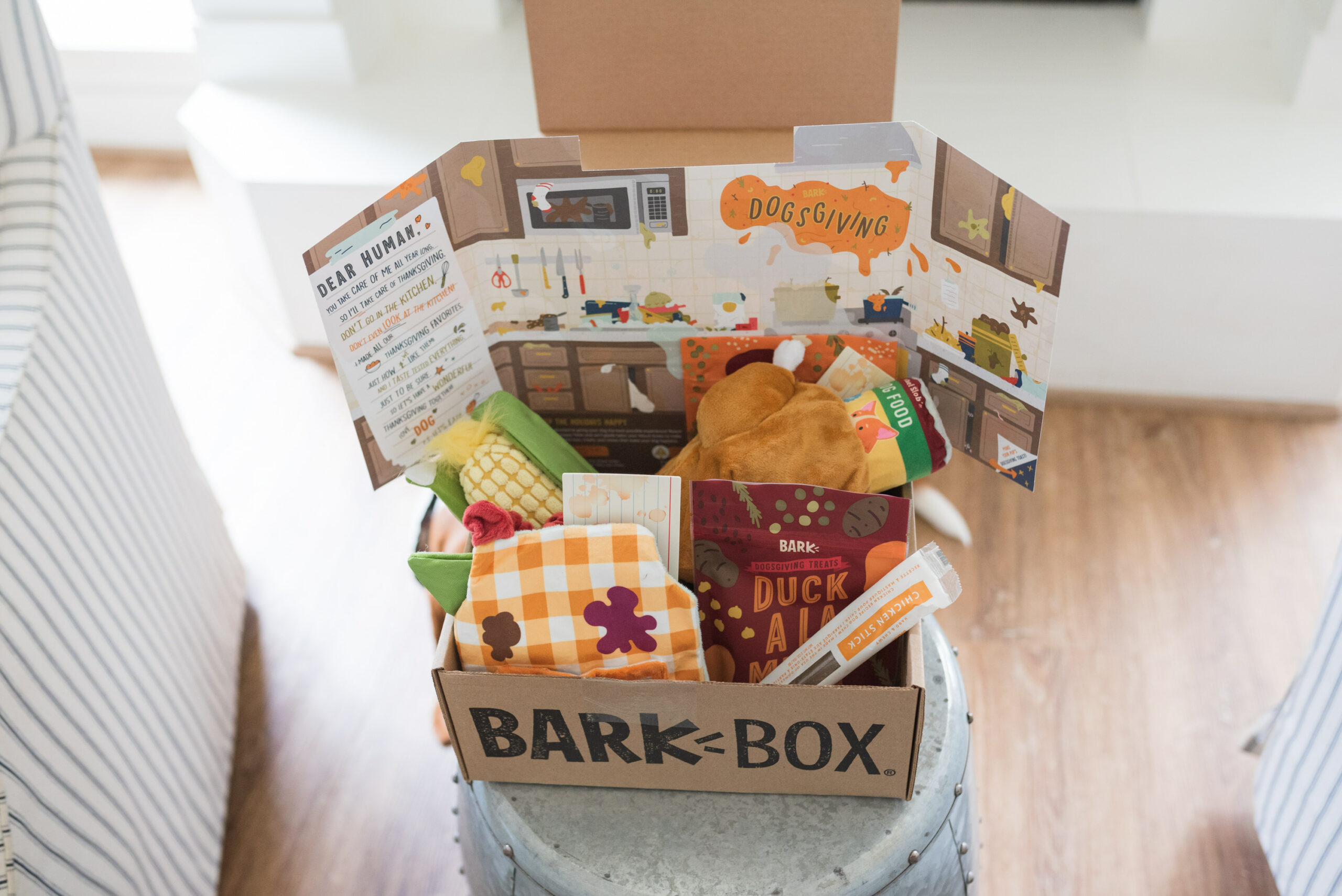 Barkbox Toys by popular Houston lifestyle blog, Fancy Ashley: image of a Barkbox filled with toys and treats.