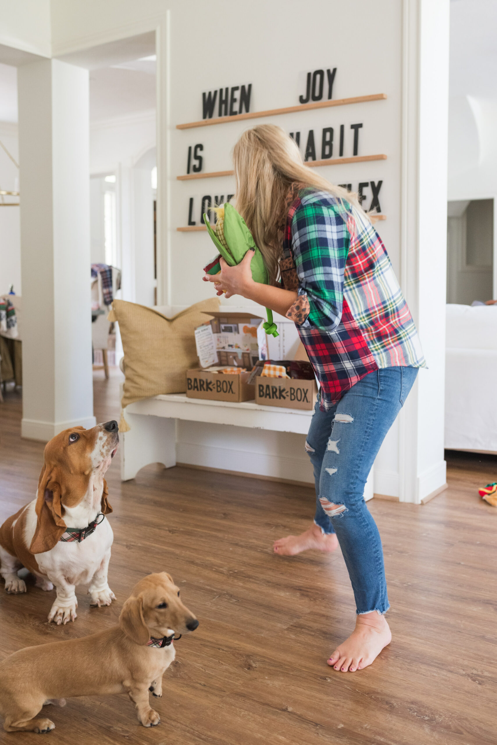 Barkbox Toys by popular Houston lifestyle blog, Fancy Ashley: image of a woman standing next to her two dogs and holding some BarkBox toys in her hands.