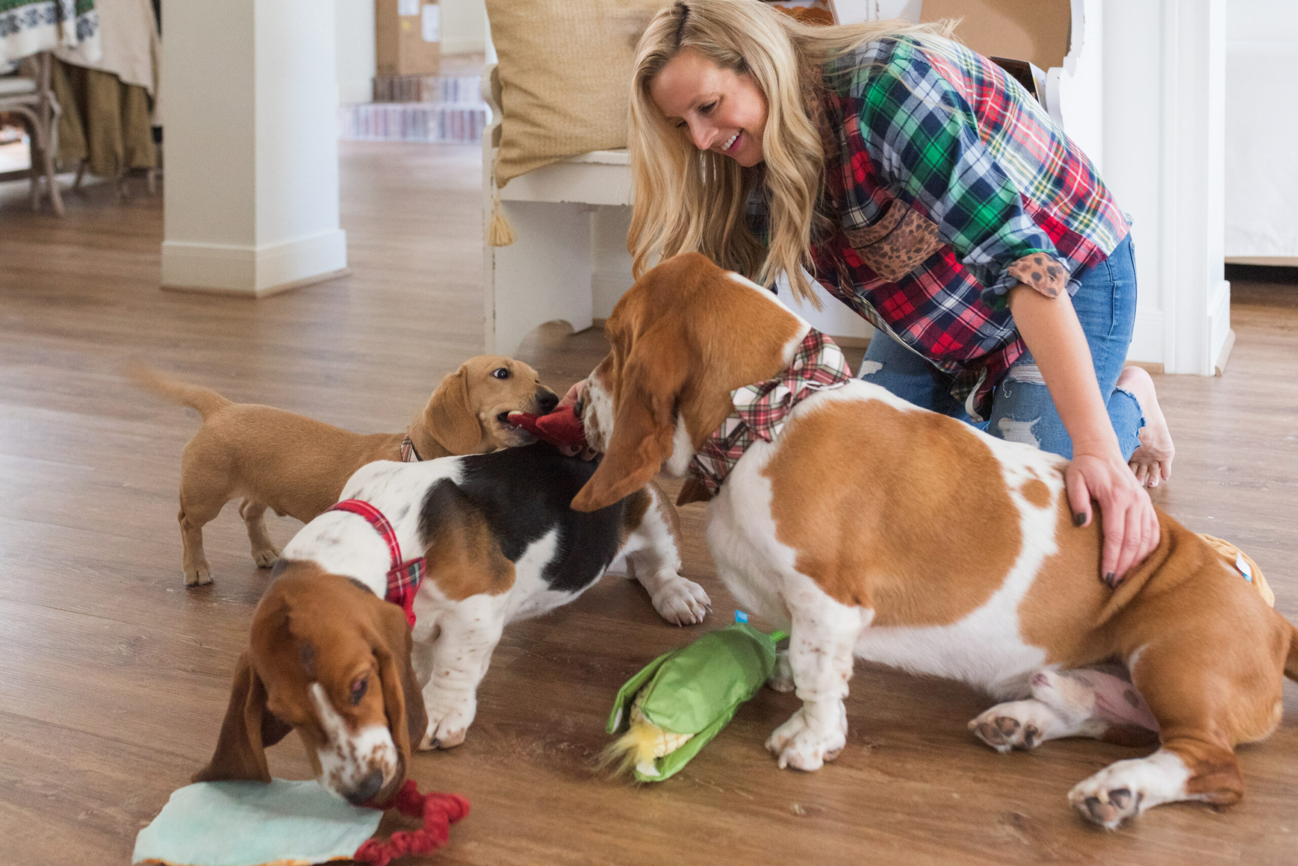 Barkbox Toys by popular Houston lifestyle blog, Fancy Ashley: image of woman playing with some BarkBox toys with her three dogs.