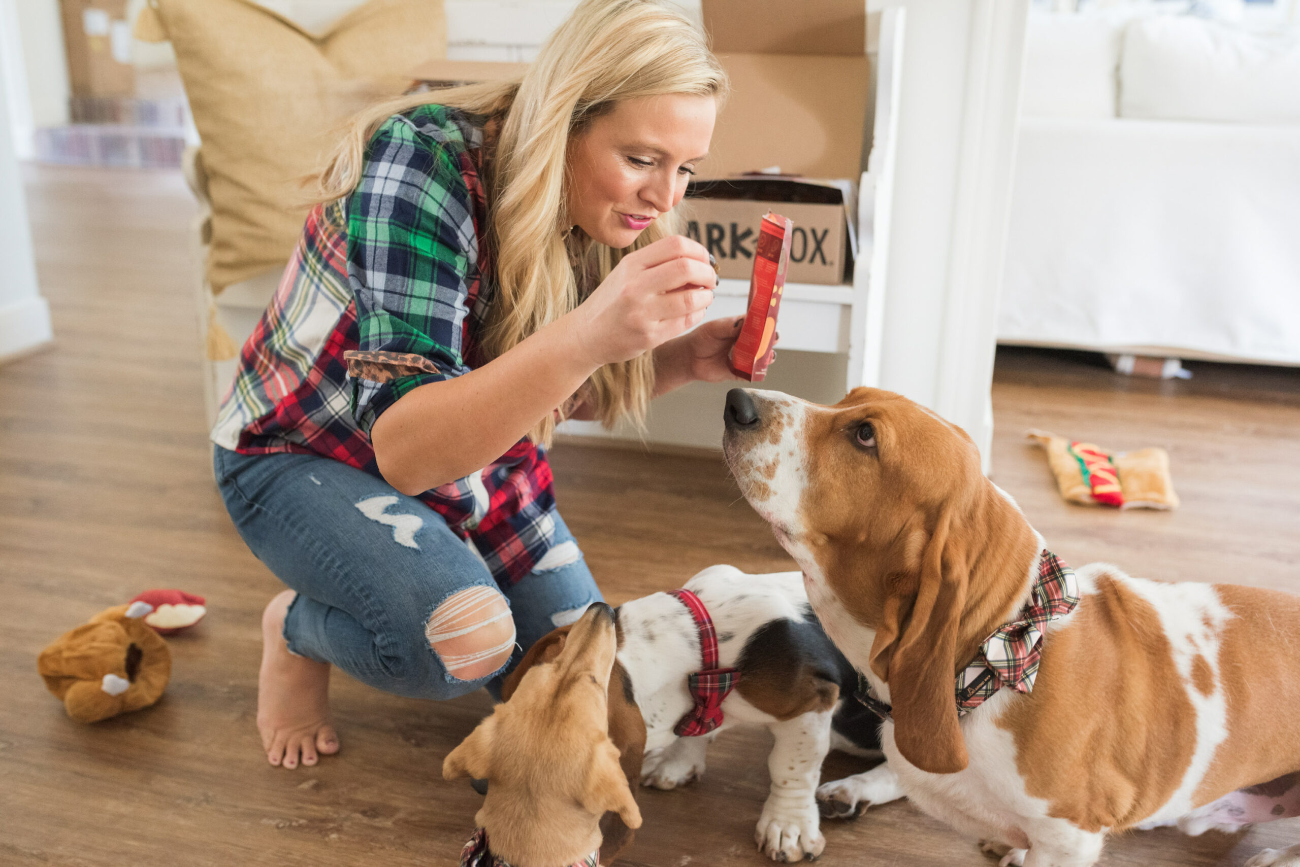 Barkbox Toys by popular Houston lifestyle blog, Fancy Ashley: image of a woman giving her dogs some Barkbox treats.
