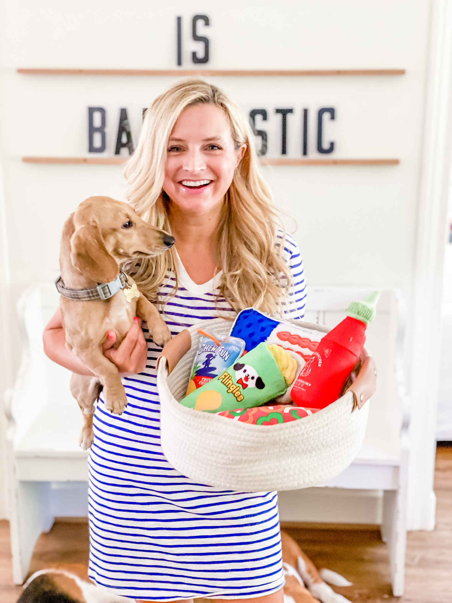 Target Dog Toys by popular Houston lifestyle blog, The House of Fancy: image of a woman wearing a blue and white stripe t-shirt dress and holding her puppy and white woven basket filled with dog toys.